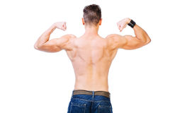 Back of a muscular man. Well defined back and biceps of a muscular man - isolated on white Royalty Free Stock Photo