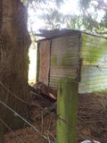 The back of my chicken coop. Stock Images