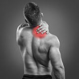 Back Neck pain. Back view portrait of a man with neck pain over gray background. Concept with highlighted glowing red spot stock image