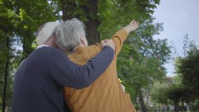 Back of old man in cap holding woman with grey hair in the amazing green park. Lady showing to male a way to the road with hand stock video footage