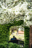 Back outdoor photo of the sensitive newlyweds sitting under the green blooming arch in the garden. royalty free stock image
