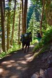 Back-Packing Mount Rainier National Park royalty free stock photography