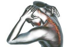 Back pain. 3D image anatomical vision back pain vector illustration