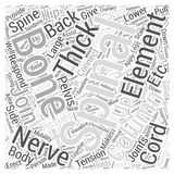 Back Pain and Diagnosis word cloud concept  background Royalty Free Stock Photos