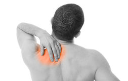 Back in pain. Rear view of a young man holding his back in pain, isolated on white background Royalty Free Stock Images