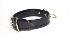 Back patent collar with O ring Stock Image