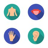 Back of the person, mouth, hand, ear. Part of the body set collection icons in flat style vector symbol stock Stock Images