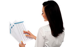 Back pose of businesswoman reading reports Royalty Free Stock Image