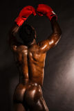 Back pose a naked african muscular male model Stock Images