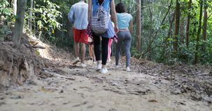 Back rear View Of Group Of Tourists Trekking On Forest Path Walking Through Trees Together On Hike People During. Adventure Vacation Slow Motion 60 stock video