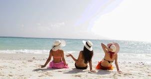 Back rear view of three girls on beach in bikini and straw hats enjoy sun tan talking, woman tourists on summer holiday stock footage