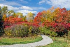 Back Road to Autumn Stock Photos