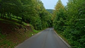 Back road through the woods in Croatia. Europe. stock video footage