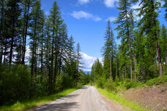 Back roads in Montana Stock Photography