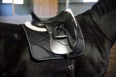 Back of saddled purebred black stallion with stirrups Stock Photography