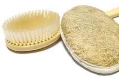 Back scrubbers Royalty Free Stock Photos