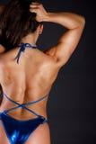 Back of sexy girl Stock Photos