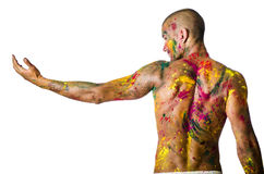 Back of shirtless young man, skin painted all over. Handsome young man seen from the back with skin all painted with Holi colors, isolated on white background Royalty Free Stock Photos