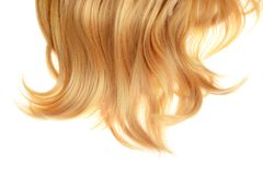 Back of short hair blond wig isolated. On white royalty free stock images