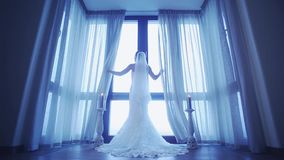 Back side of bride in wedding dress come to window and uncover white curtains. Cold shades. stock video footage