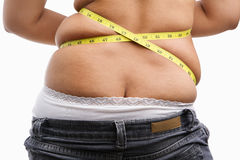 Back side of fat woman Stock Images