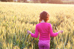 Back side of happy kid looking at the sunset in wheat field , explore and adventure concept Stock Photo