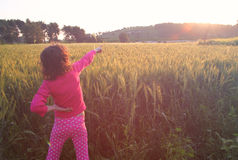 Back side of happy kid looking at the sunset in wheat field , explore and adventure concept Royalty Free Stock Image