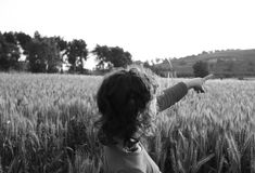Back side of happy kid looking at the sunset in wheat field , explore and adventure concept Stock Photos
