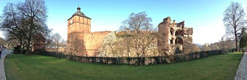 The back side of Heidelberg Castle. Seeing the back side of Heidelberg Castle by pass the light green grasses Stock Photos