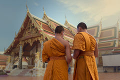 Back side Novice Monk royalty free stock photo