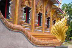 Back of southeast asia dragon. The stair way is decorated by southeast asia dragon to entrance to  sanctuary Stock Image