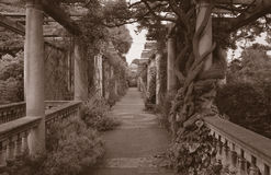 Back in Time. Sepia toned image of old collonaded walkway with decaying pergola timbers Stock Photo