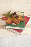 Back to college autumn old books Royalty Free Stock Image