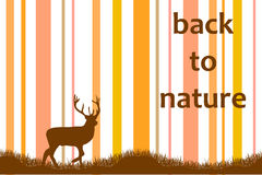 Back to nature Stock Images