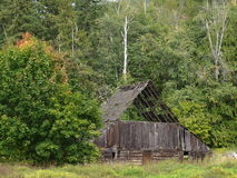Back to nature. Nature is slowly reclaiming this old barn slowly one board at a time Royalty Free Stock Image