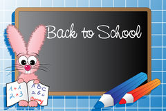 Back to scghool with bunny Stock Images