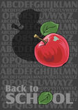 Back to School. Vector Back to School background with alphabet Stock Photography