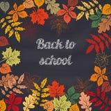 Back to school  background. Back to school  background on school blackboard  with autumn leafs. Vector Illustration Royalty Free Stock Photo