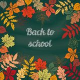 Back to school  background. Back to school  background on school blackboard  with autumn leafs. Vector Illustration Royalty Free Stock Photos