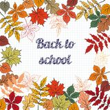Back to school  background. Back to school  background on school blackboard  with autumn leafs. Vector Illustration Royalty Free Stock Images
