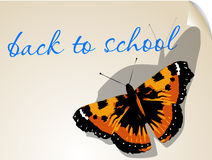 Back to school. background with butterfly Stock Images