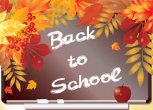 Back to School. Background with maple leaves. Stock Image