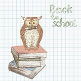 Back to school background 1 Stock Photos