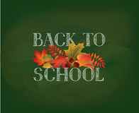 Back to school. Banner with  autumn leaves over green chalkboard. Background. Vector Stock Image