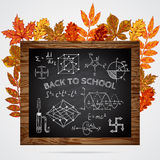 Back to school. Banner with chalkboard, educational inscriptions and autumn leaves. Stock Photos
