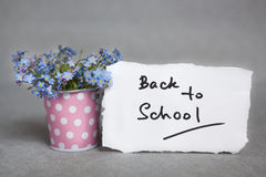 Back to school with blue flowers on gray. Education concept. Back to school with blue flowers on gray Royalty Free Stock Image