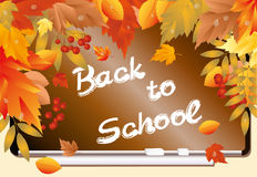 Back to school card with maple leafs Stock Photo
