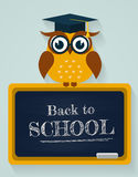 Back to school. Card with owl and blackboard. Vector illustratio. Back to school. Card with learned owl sitting on a blackboard. Flat design. Vector illustration Royalty Free Stock Photos