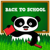 Back to school card with panda Royalty Free Stock Photos