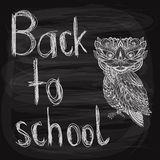 Back to school chalk drawn  background Stock Photo
